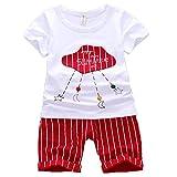 ハイキングフライ(Hikfly)ベビー服男の子女の子 赤ちゃん柔らかい綿ツーピース半袖 Tシャツ&ショートパンツ セット (ストライプ) (XL/24-30 ヶ月, ピンク) (S /6-12ヶ月, 赤)