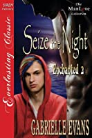 Seize the Night (Enchanted)