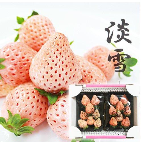 【 熊本県産 】 淡雪 白いちご 桜色 (2パック( 400g強 ))