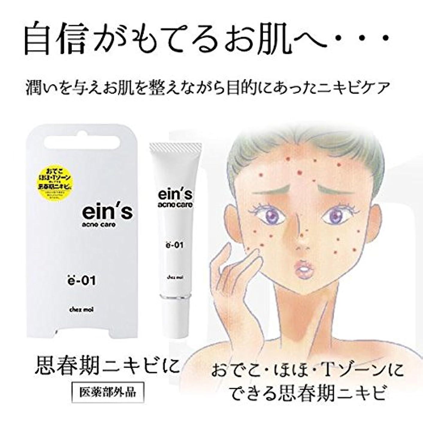 放牧する故障カッターein's(アインス) acne care(アクネケア) e-01(思春期ニキビ) 医薬部外品 15g