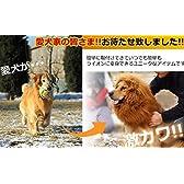 犬 ライオン変身セット 鬣 愛犬 ライオンキング  服 防備 散歩 おしゃれ 可愛い ウエア フード KB-DOGLION