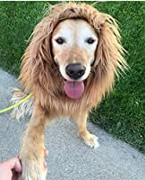 Unicool Dog Lion Mane Wig for Medium Large Dogs with Ears&Tail Funny Realistic Cosplay Costume Adjustable 30 inches with String Perfect for Halloween Dog Dress-up [並行輸入品]