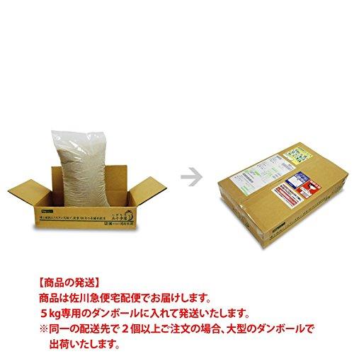 【出荷日に精米】 佐賀県産 さがびより 白米 5kg 平成28年産 特A米 白石地区限定