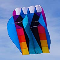Into the Wind UltraFoil 9 Kite