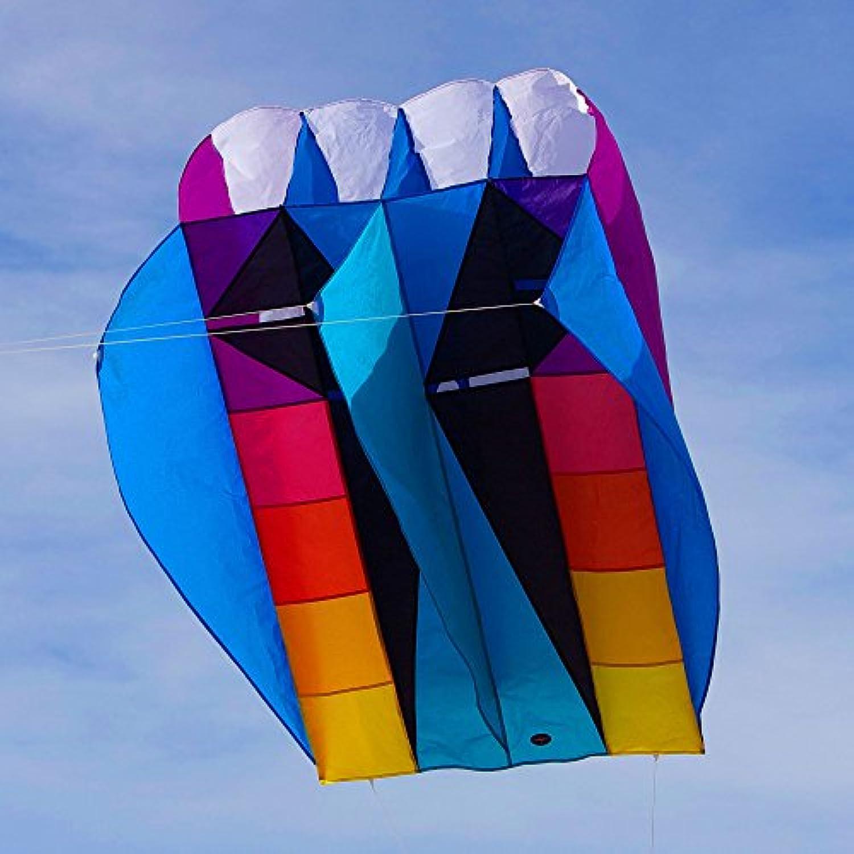 Into the Wind UltraFoil 9 Kite