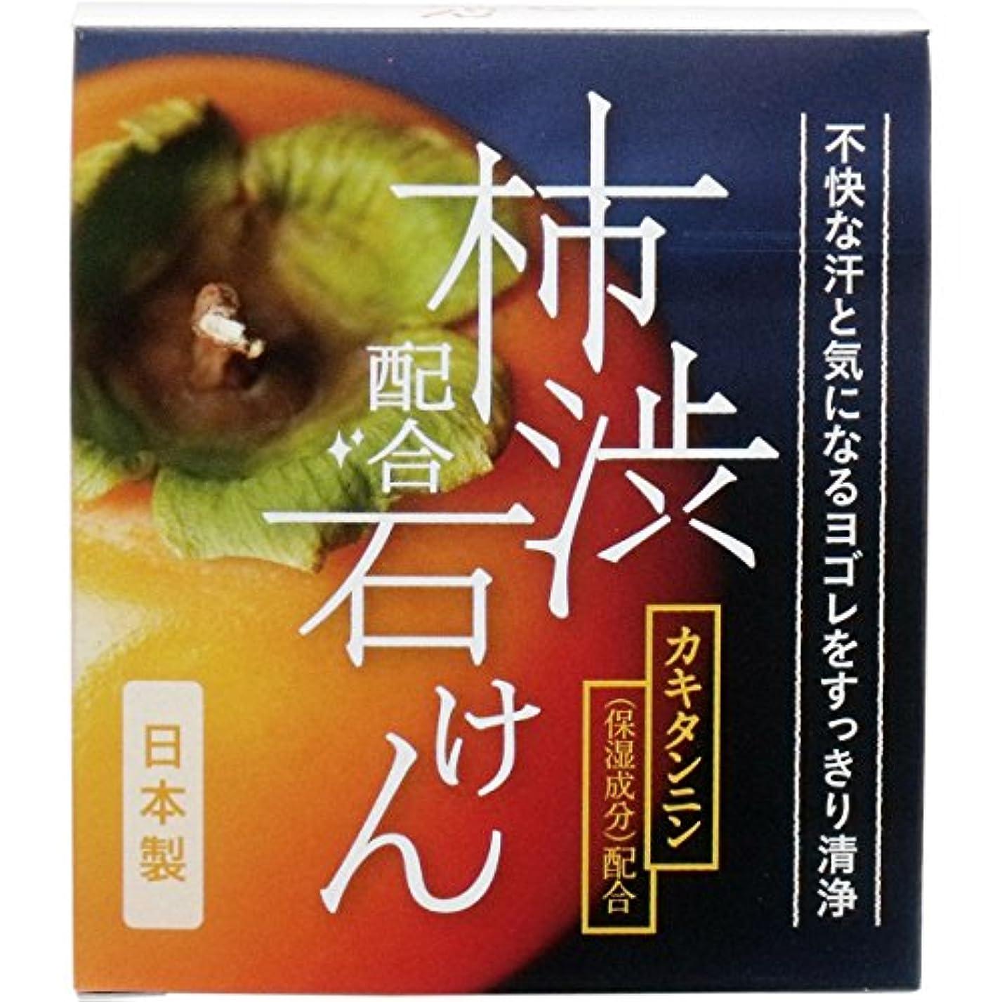 同意ベジタリアン眩惑するW柿渋配合石けん WHY-SKA 100g