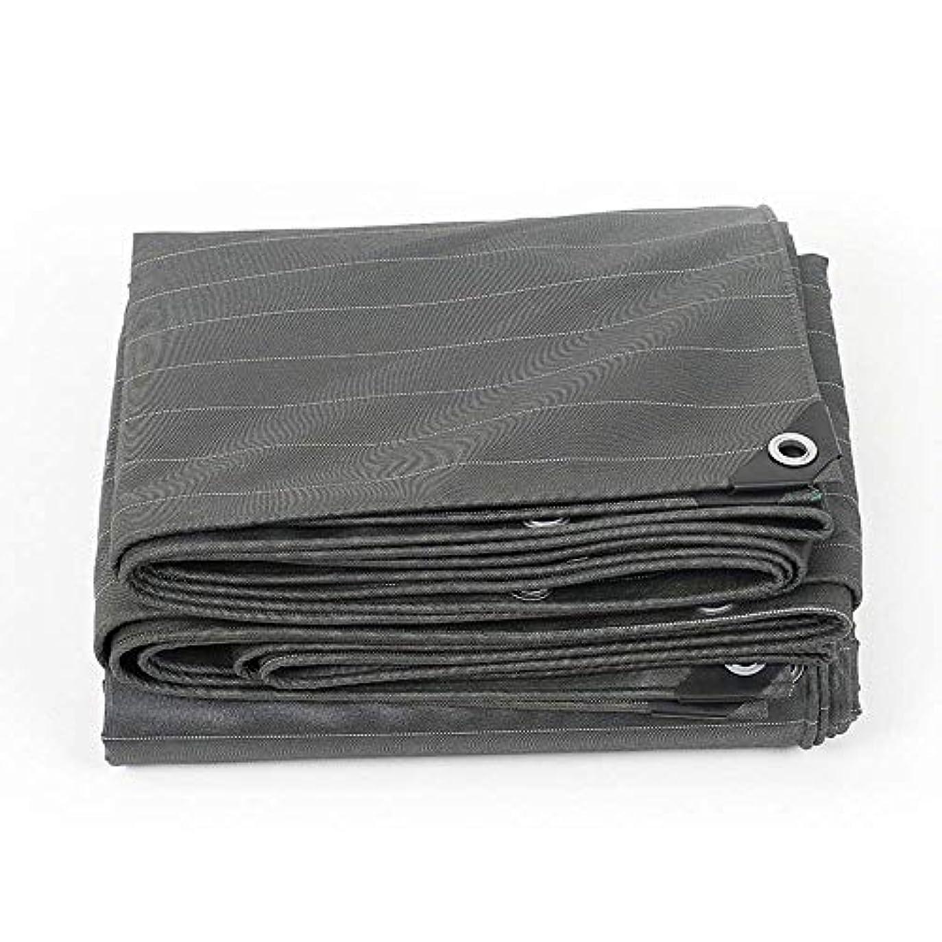 不機嫌そうな使い込むクラウドZX タープ 防水シート厚くする防水シートアウトドア防水日焼け止めシェード布トラック植物カバー0.5mm560 G/M 2 テント アウトドア (Color : Gray, Size : 5x5m)