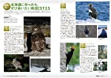BIRDER (バーダー) 2014年 02月号 北海道「極上」バードウォッチングガイド 画像