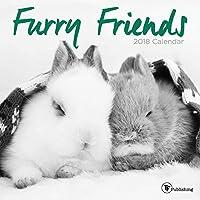 Furry Friends Mini Wall Calendar [並行輸入品]