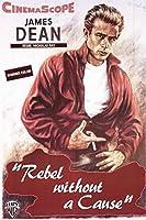 古いTin Signジェームズ・ディーンRebel Without a Causeクラシックヴィンテージ映画ポスターMade in the USA