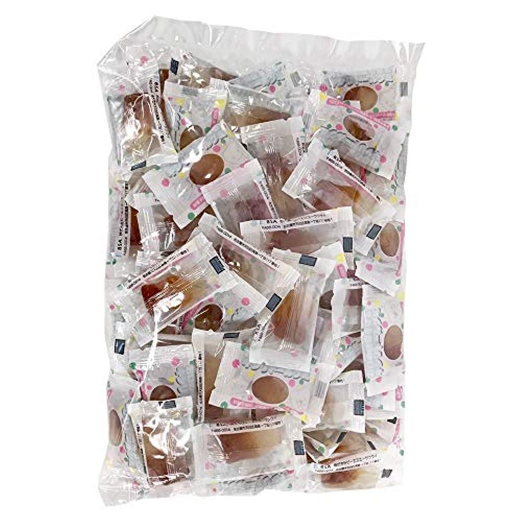 空白子豚ビジターキシリトール100%グミ キシリコーラXYLICOLA 大袋100粒入
