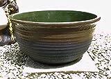 大型睡蓮鉢 茶色 JKS-L 17号 ビオトープ創り 金魚やメダカ、水生植物に