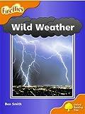 Oxford Reading Tree: Stage 6: Fireflies: Wild Weather