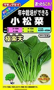 タキイ種苗 おいしさセレクト 年中栽培ができる小松菜 極楽天