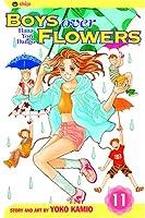 Boys Over Flowers, Vol. 11: Hana Yori Dango