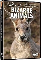 Ultimate Wildlife: Bizarre Animals [DVD] [Import]