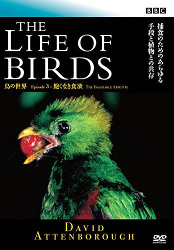 BBC 鳥の世界3 飽くなき食欲 [DVD]