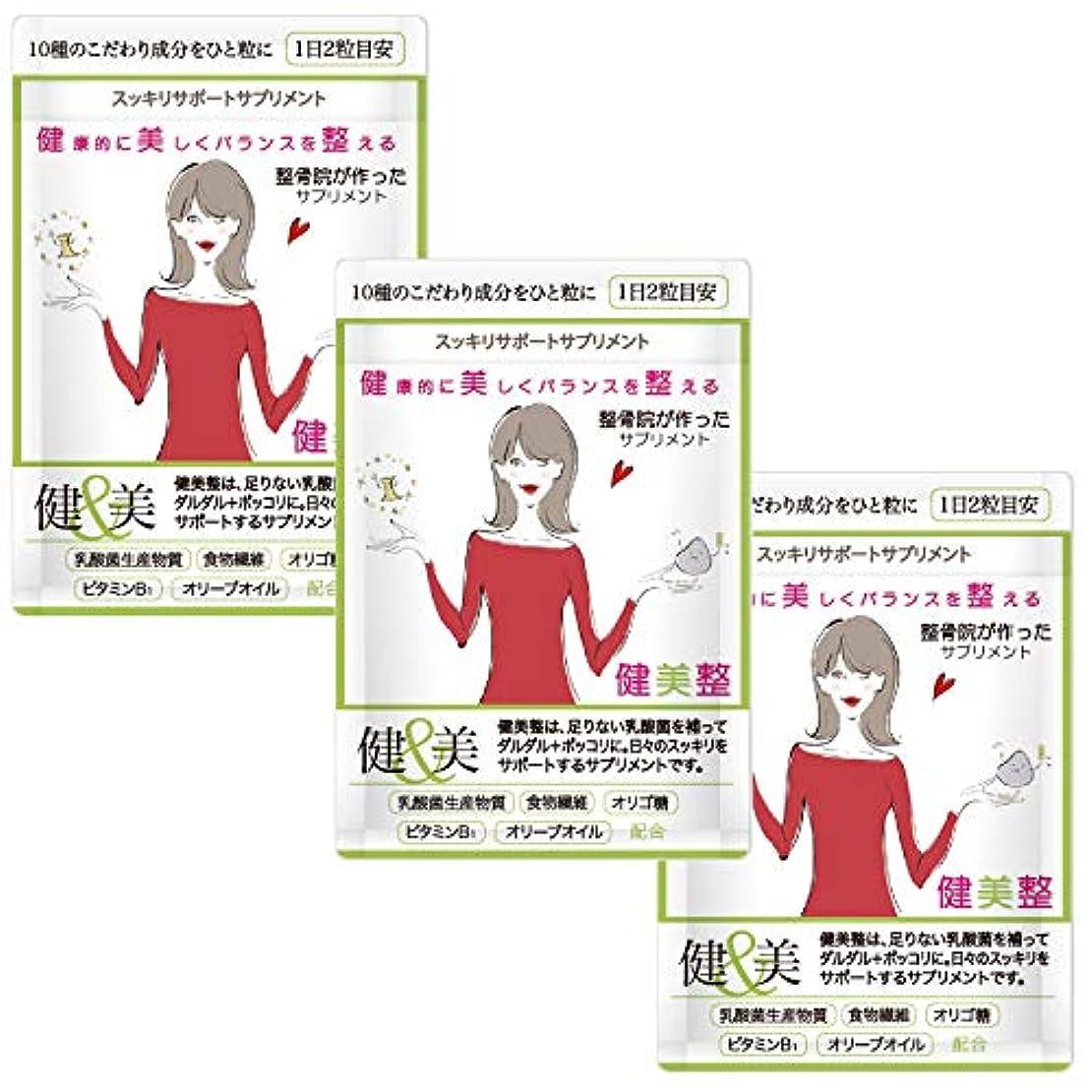 楽しいスラックコンソールダイエット サプリメント 人気 酵素 健美整プラス 腸内環境 炭 60粒1か月分 (3)