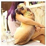 リアル 犬 抱き枕 インテリア 抱きまくら クッション 動物 (45cm)