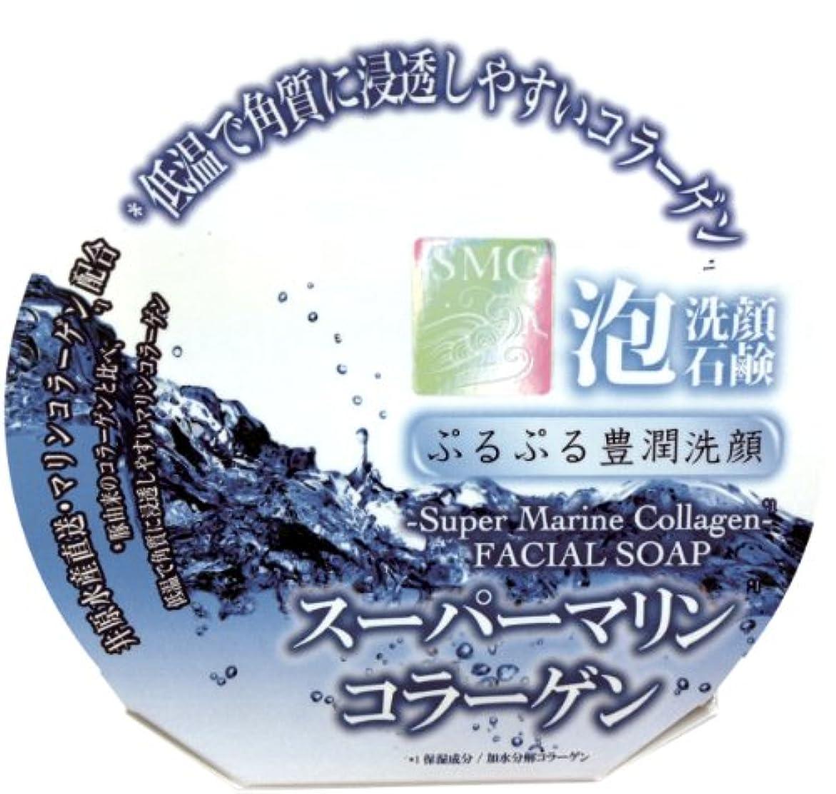 工場コーラス気質ペリカン石鹸 スーパーマリンコラーゲン 100g