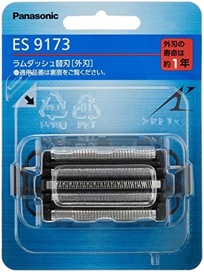 スタンド有効人道的パナソニック 替刃 メンズシェーバー用 外刃 ES9173