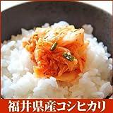 白米 コシヒカリの故郷福井県 28年 福井県産 特上 コシヒカリ 5kg