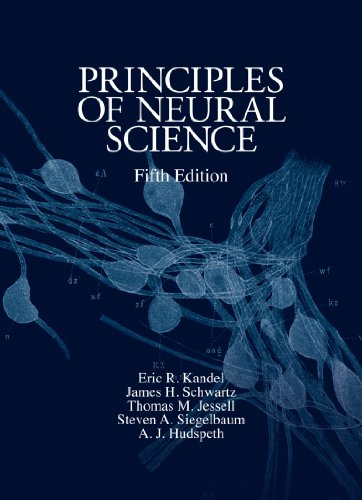 amazon co jp principles of neural science fifth edition