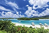 1000ピース ジグソーパズル めざせ! パズルの達人 石垣島の碧い海―沖縄(50x75cm)