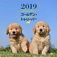 2019年大判カレンダー ゴールデン・レトリーバー