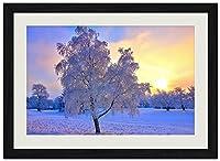 雪に覆われた森 (B003) 自然風景 壁掛け黒色木製フレーム装飾画 絵画 ポスター 壁画(35x50cm)