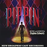 Pippin  (2013 Broadway Cast)