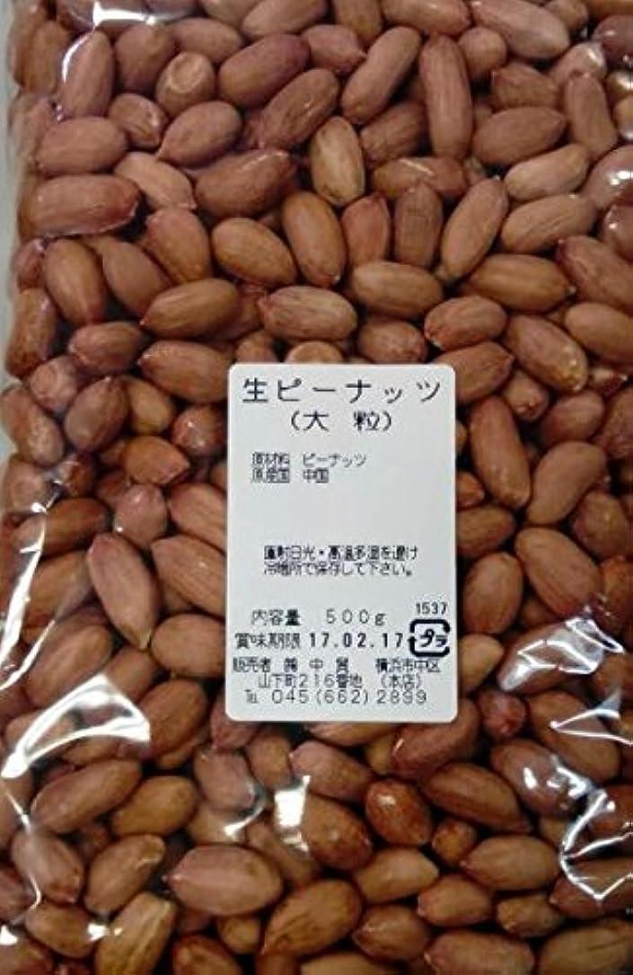 トリクル休暇関係する横浜中華街 生ピーナッツ(大粒) 500g