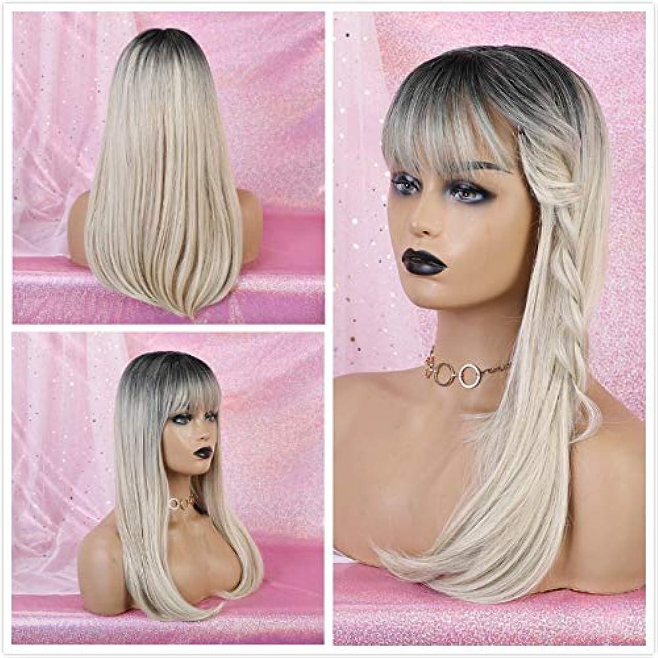 爆弾明らかにギネス女性の好きなウィッグ 黒人女性アフロストレートナチュラルパーティー偽毛かつら用前髪コスプレの合成とALAN EATONロングオンブルブラウンブロンドウィッグ (Color : Lc167 4)