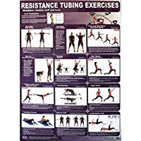 Productive Fitness Poster Series Upper Resistance Tubing Exercises Laminated