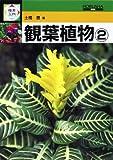 観葉植物〈2〉 (検索入門)