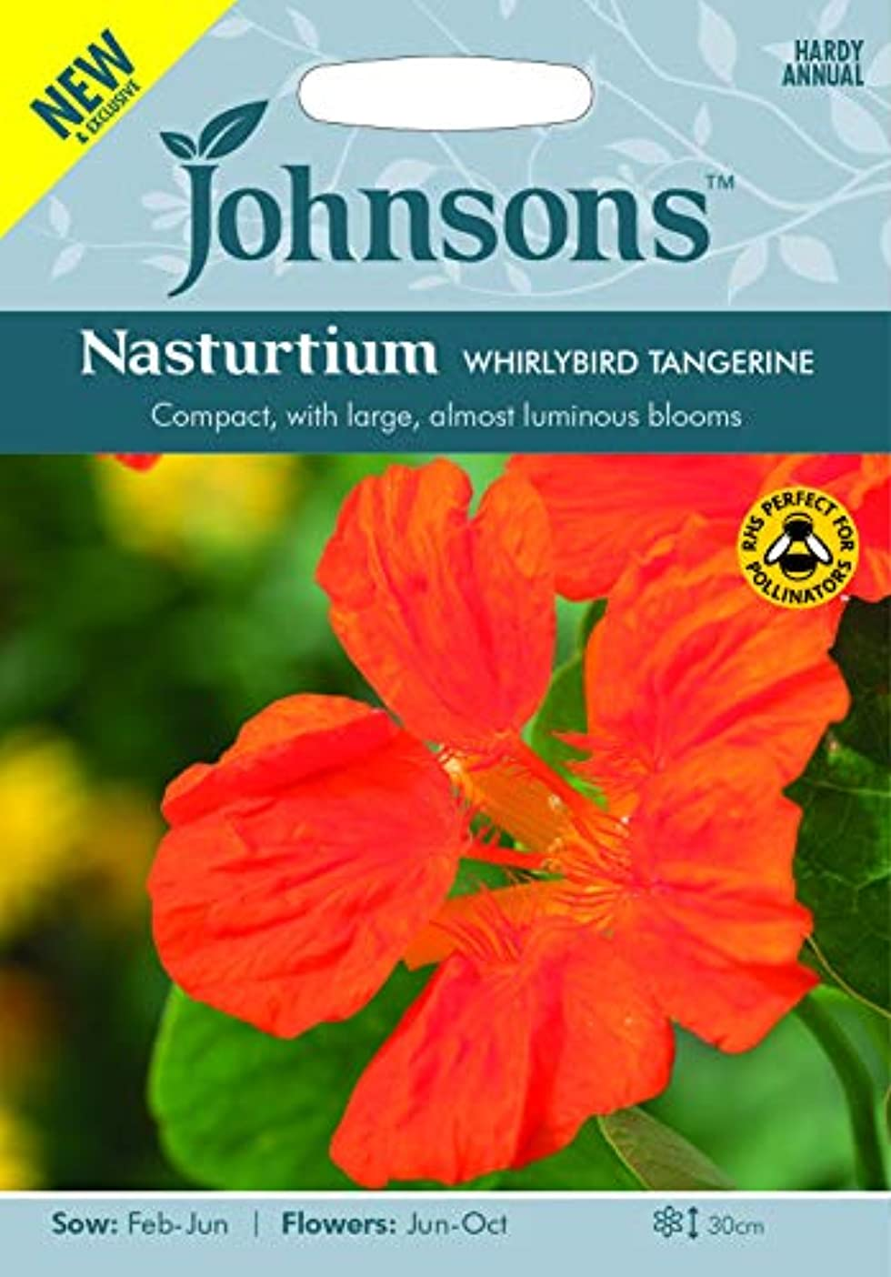 シェード返還プラットフォーム種子パッケージ:3:ジョンソンSeedsWhirlyタンジェリン種子 - Y!