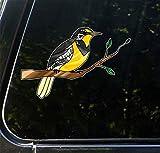 鳥–ニシマキバドリon Branch–ステンドグラススタイル不透明ビニール車デカール–著作権2015yadda-yaddaデザインCo。 M CLR:CAR