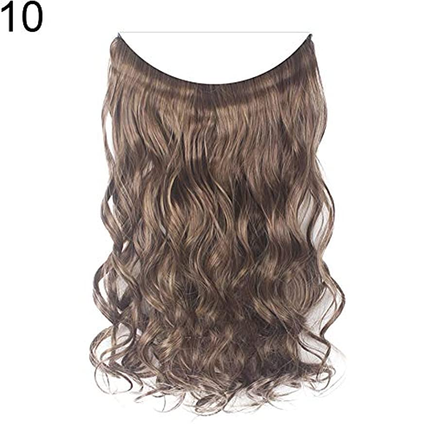 百科事典静かにスノーケルslQinjiansav女性ウィッグ収納コンテナ22インチ女性ロングストレート/カーリーワイヤーヘッドバンドウィッグ目に見えない髪の延長