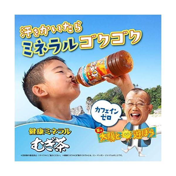伊藤園 健康ミネラルむぎ茶の紹介画像26