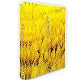 日本ドラマ「北の国から」DVD-BOX TV+OST 全24話を収録した12枚組 DVD 田中邦衛/吉岡秀隆
