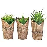 【手入れ不要】フェイクグリーン 3セット 人工 観葉植物 ペーパーラップ
