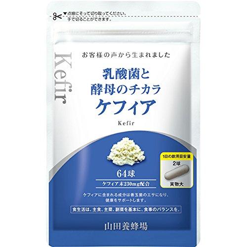 乳酸菌と酵母のチカラ ケフィア 64球/袋入