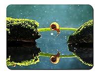 ロンリーカタツムリ、草橋、苔、水の反射 パターンカスタムの マウスパッド 旅行 風景 景色 (22cmx18cm)