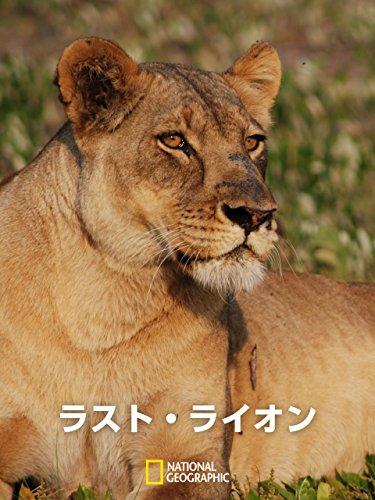 ラスト・ライオン