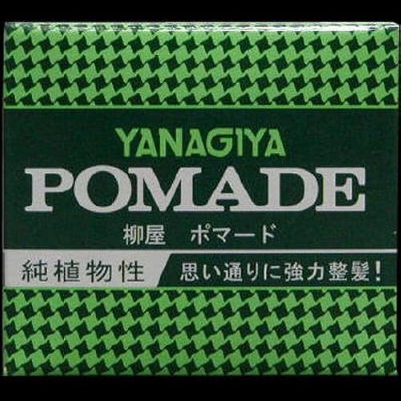 グリーンランド寝てる促進する【まとめ買い】柳屋 ポマード小 63g ×2セット