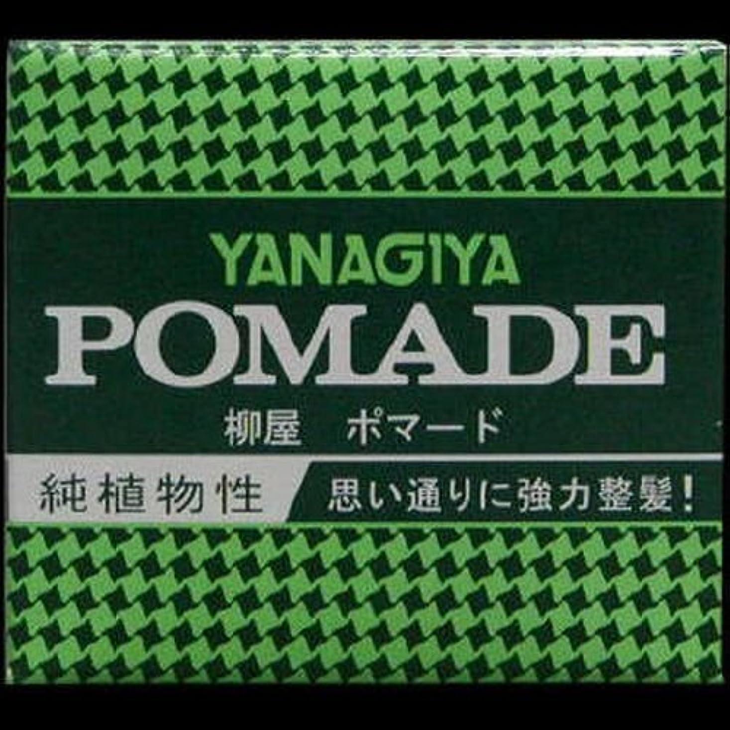 鹿大統領松【まとめ買い】柳屋 ポマード小 63g ×2セット