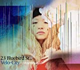 23 Bluebird Street,Velo-City 画像