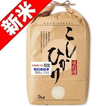 29年産 新米 熊本産 特別栽培米 コシヒカリ 5kg 天草指定 (白米精米(精米後約4.5kg))