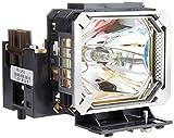 キヤノン SX60用交換ランプ RS-LP03 1312B001