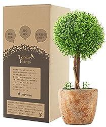 フェイクグリーン 光触媒 トピアリー ボール お世話のいらない 癒しの グリーン 観葉植物 インテリア 人工観葉植物
